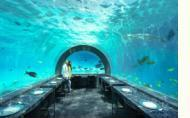 You and Me by Cocoon Maldives H2O Underwater Restaurant