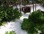 aaaVeee Nature's Paradise Kotari Kolhu Family Room